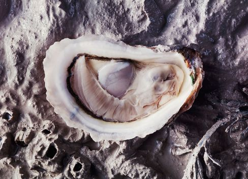 Oysters Are the New Black