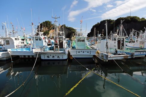Fukushima Fishermen Ruined by Tepco Now Key in Radiation Fight
