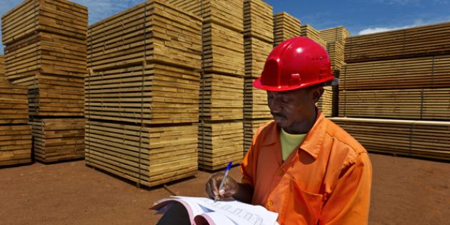 Lumber and Other Construction Materials Merchant Wholesalers
