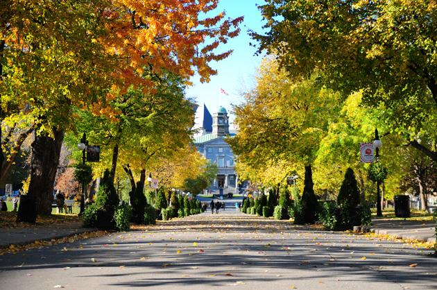 10. McGill University
