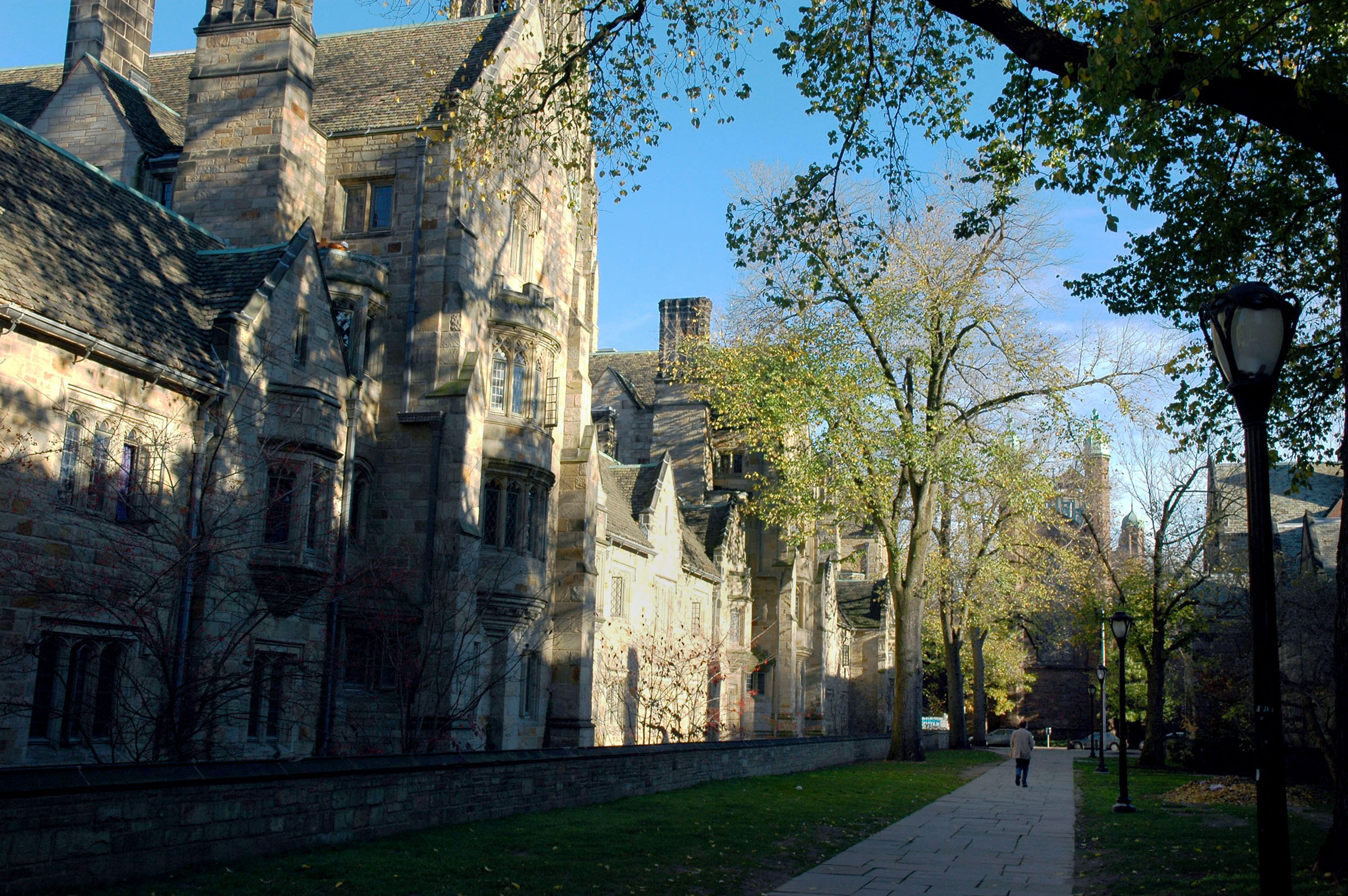 What steps should I take to be accepted in Harvard,Yale, exc.?