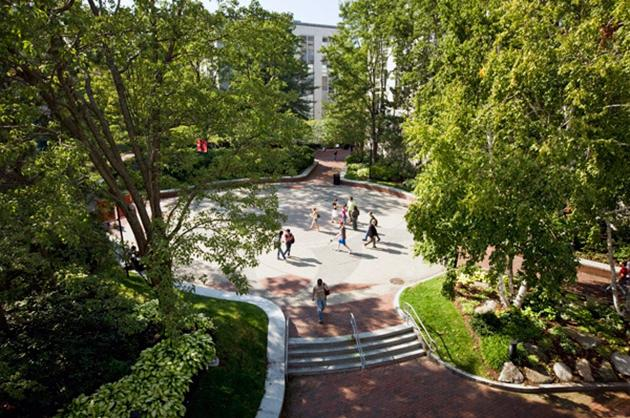 No. 19 Northeastern University D'Amore-McKim School of Business