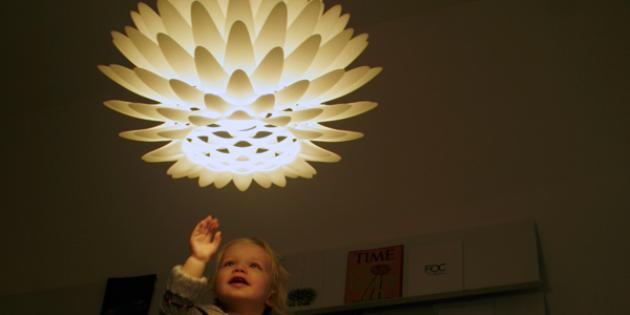 Lighting: Palm Hanging (D50)