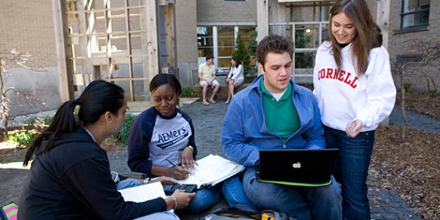 25. Cornell University