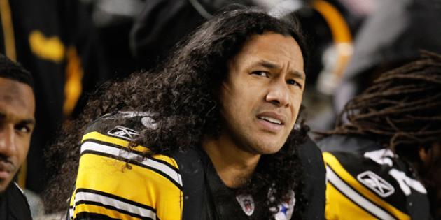 Troy Polamalu's hair