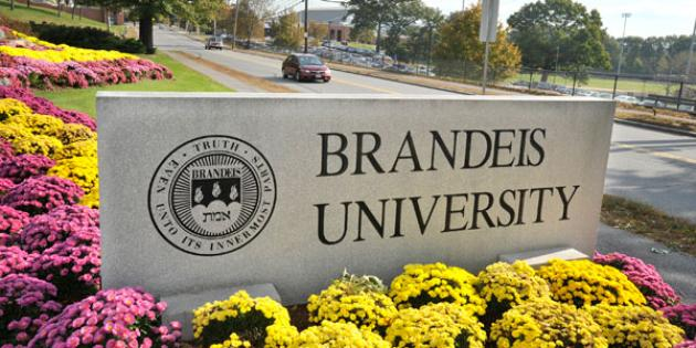 No. 49 Brandeis University
