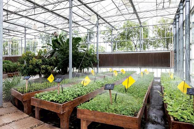 Organic farming business plan