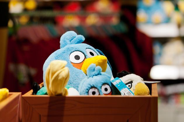 Stuffed Birds