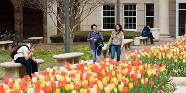 30. Southern Methodist University
