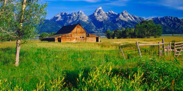 No. 12 Biggest Beer Drinker: Wyoming