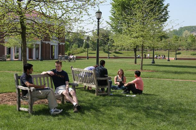11. University of Virginia