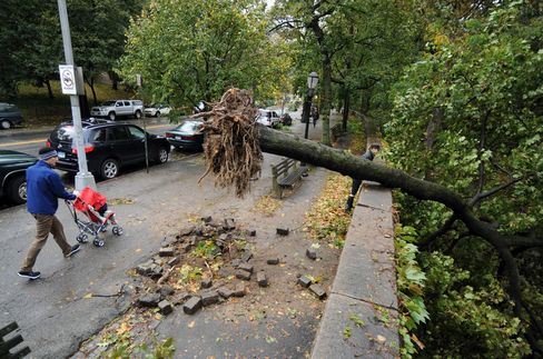 New York City Marathon Assessing Storm Damage Before Race Call