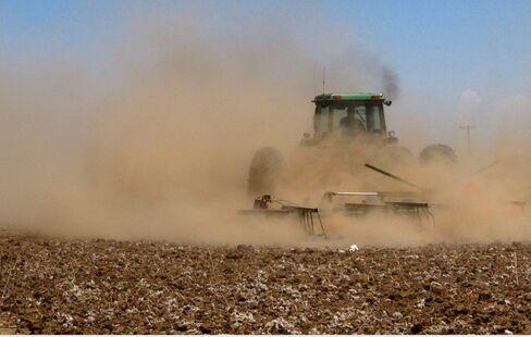 Food and Farm Texas Drought