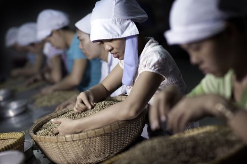 Coffee Farmers in Vietnam Curbing Sales as Drought Hurts Crop