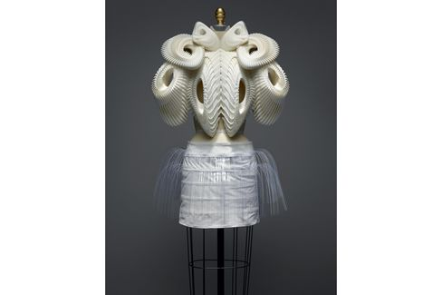 An ensemble by Iris van Herpen for her Spring/ Summer 2010 haute couture line.