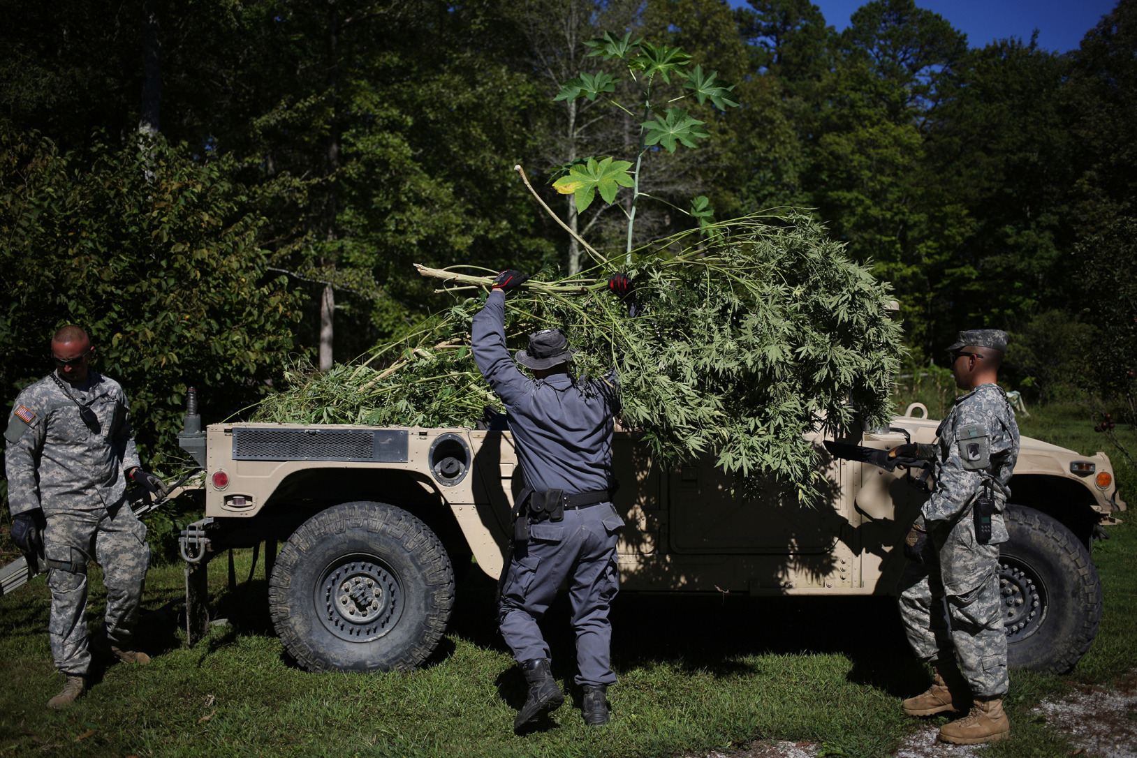 Burning Kentucky's Illegal Weed: A Ride-Along With the Cannabis Cops