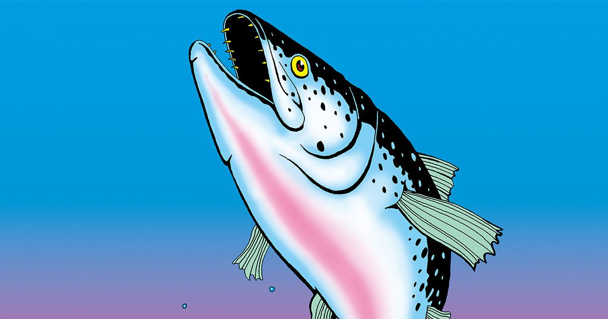 Want Cleaner, Healthier Salmon? Raise Them on Land