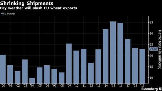EU Loses to Canada for No. 3 Wheat Exporter Title as Crops Fry