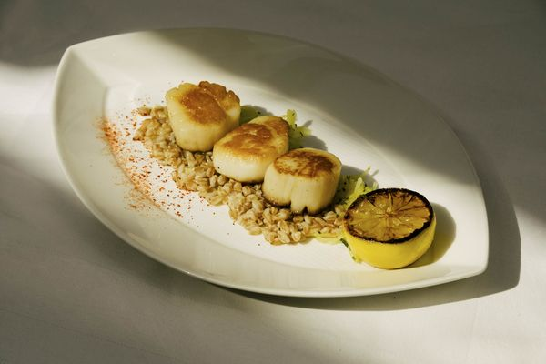 The Nantucket Scallops Were Fat And Well Cooked If Overseasoned