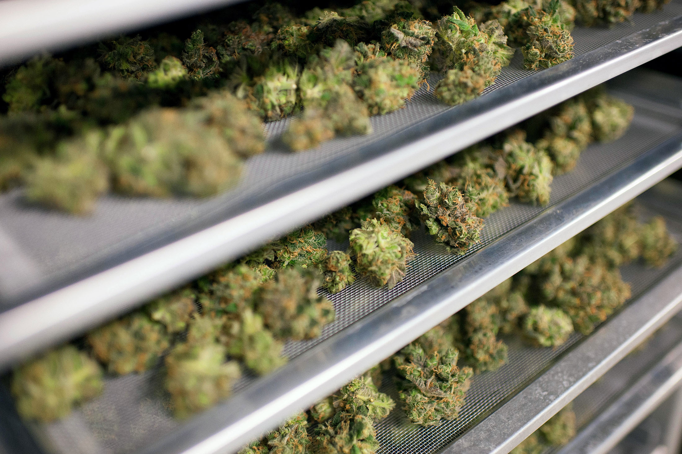 You Can Now Buy and Sell 'WEED' on the Toronto Stock Exchange