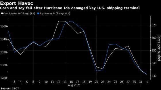 Corn, Soy Slide Further as Storm Damage Hobbles U.S. Export Flow