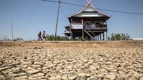 A dried up rice field in Makassar, Indonesia, that the Indonesia's national disaster management agency says was the result of the El Nino weather phenomenon.