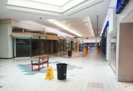Billionaire N.Y. 'Bottom Feeder' Buys Malls as Others Run Away