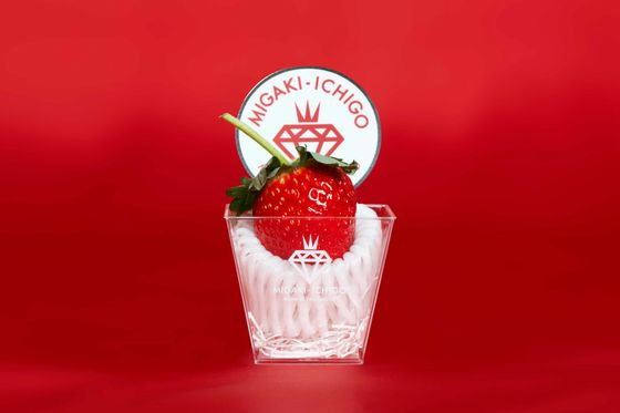 A Strawberry With a $10 Price TagHelps One Tsunami-Hit Town toRecover
