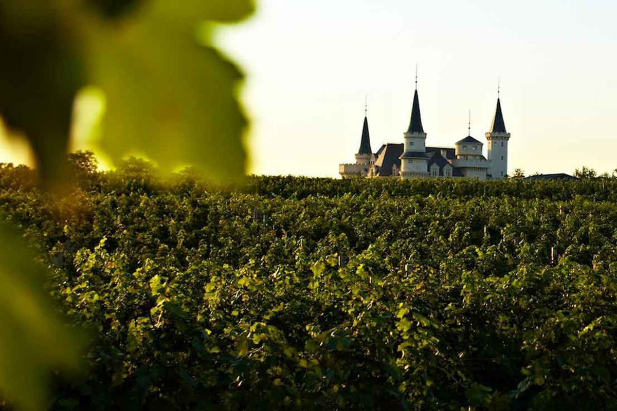 Image for China Is Building a Disney World for Wine in Xi'an and Yantai - Bloomberg