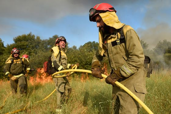 A Tale of Two Wildfires:Lessons From Europe's Blazing Summer
