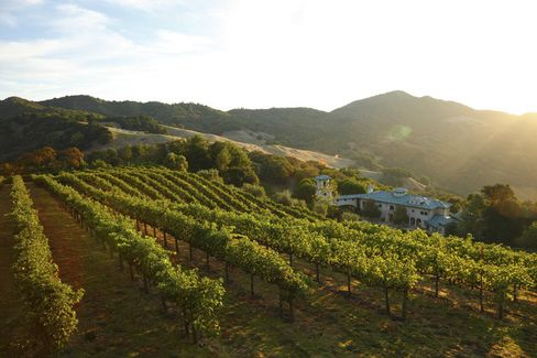 A partof the 18.4-acre vineyard on the 640-acre Villa Sorriso estate.
