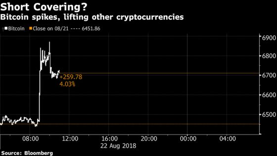Cryptocurrencies Climb as Market Watchers Cite Short Covering