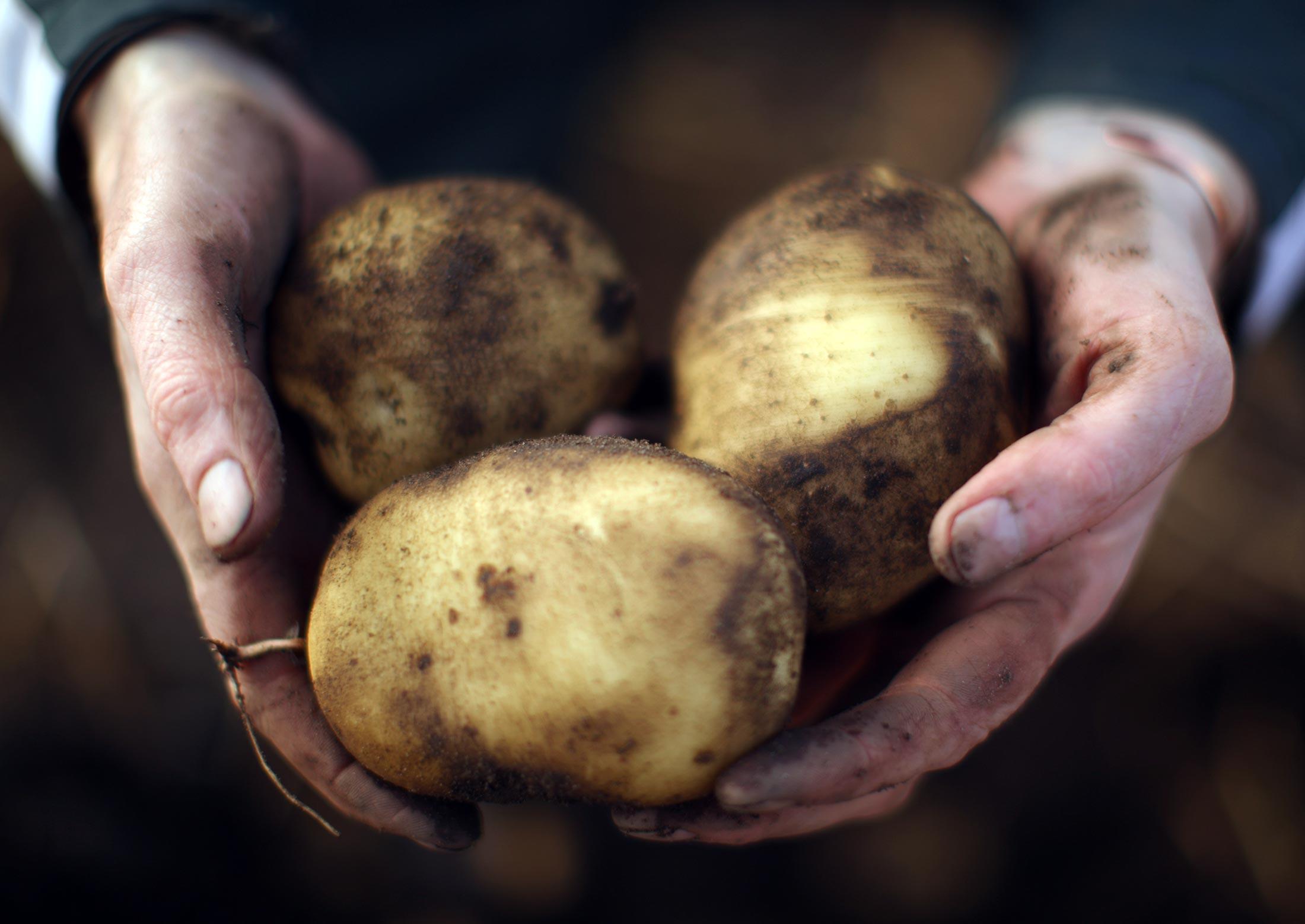 bloomberg.com - Mara Bernath - Swiss Bid for Sustainable Food May Run It Into Trade Trouble