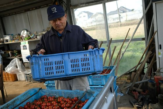 Humans Are Beating Robots to the Jobs on Japanese Farms