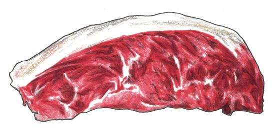 Five Choice Cuts of Meat to Know for Adventurous Grilling