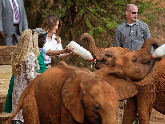 Melania Trump Feeds Elephants in Kenya, Drawing Contrast With Stepsons