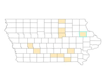 Delaware County (highlighted) is among the 10 counties in Iowa with the largest proportion of non-Hispanic whites.