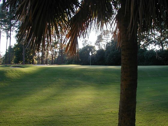 The Best Golf Courses to Play if You're Not Playing at the Masters