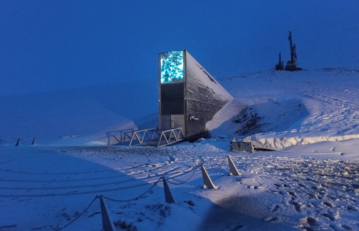 A Warning Cry From The Doomsday Vault Bloomberg