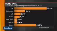 relates to European Growth Companies Help Lucerne Fund Surge 42%