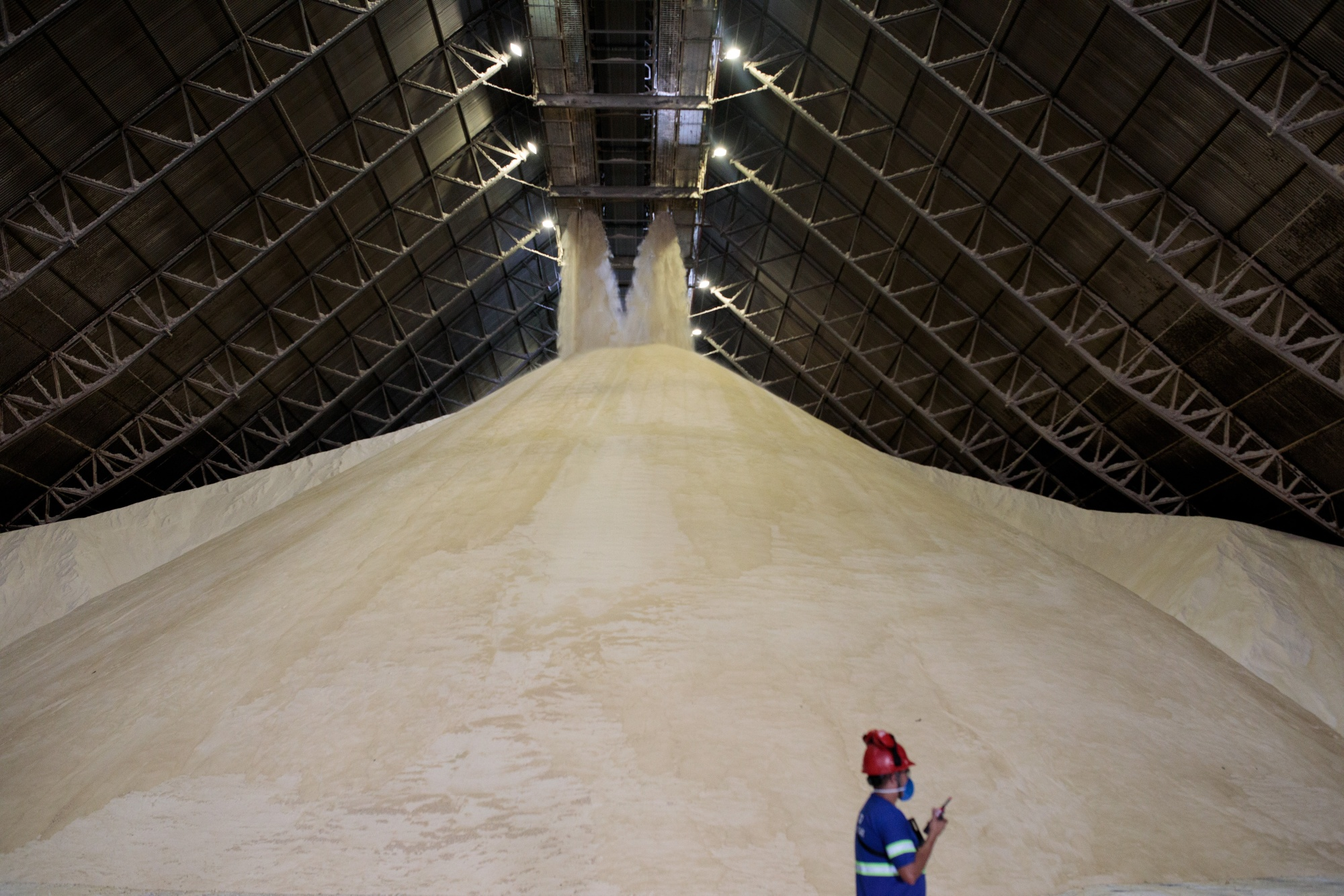 Sugar Rally Gets Boost From Soybean Woes At Port Of Santos