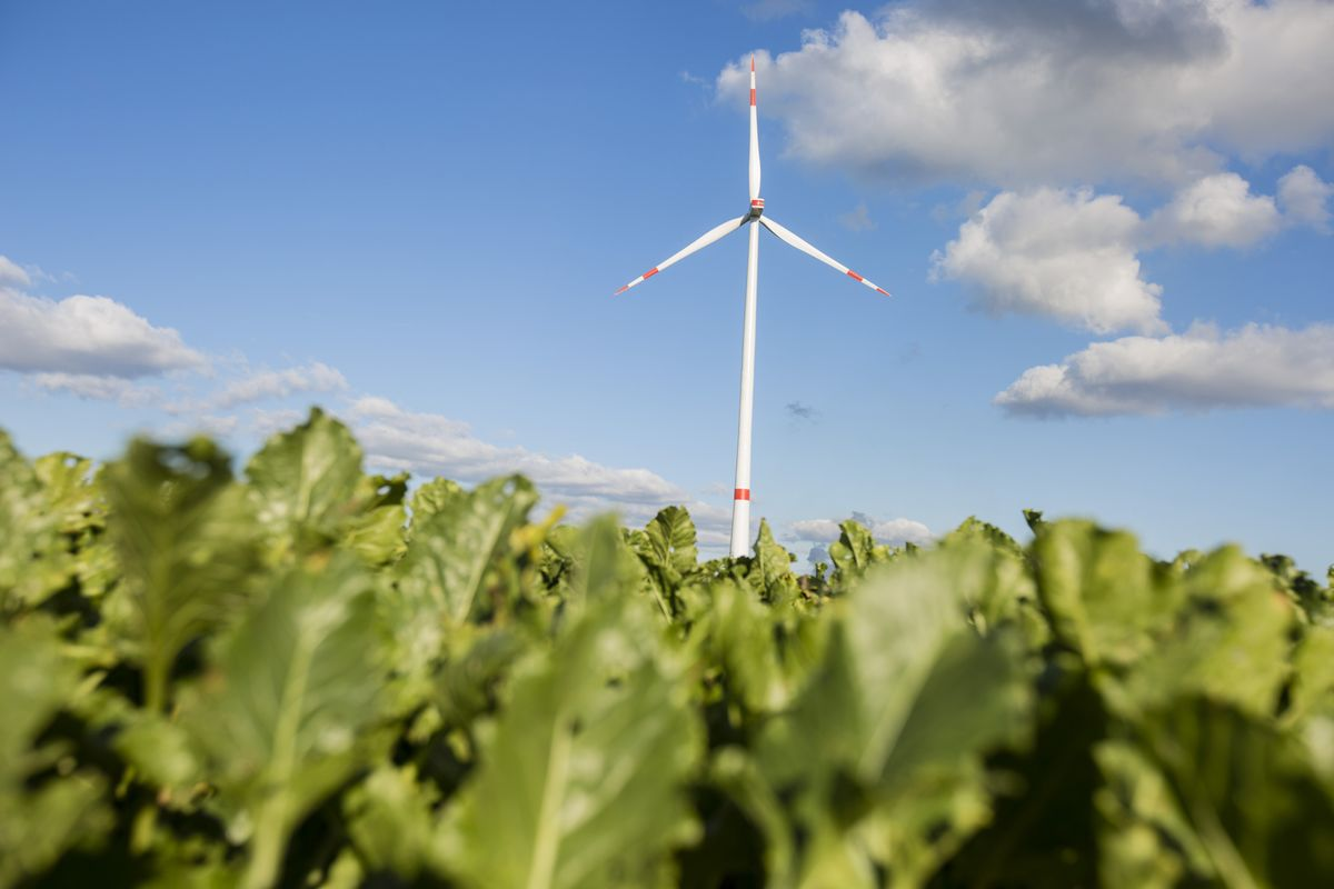 Utilities Pooling Cash for $130 Million Clean Technology Fund