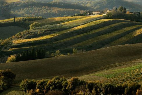 Winemakers in this well-known zone in the heart of Tuscany are aiming for the higher-spending luxury market.