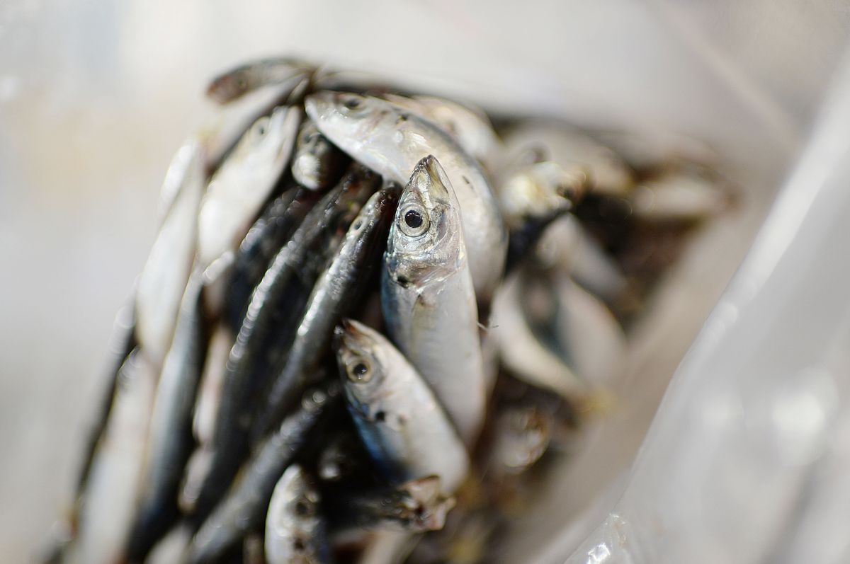China Bans Seafood From Indonesian Exporter After Virus Found