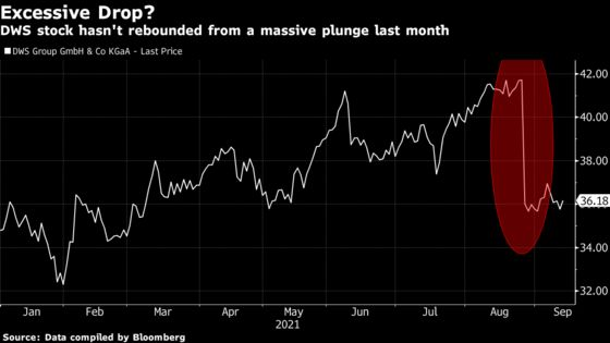 DWS Selloff 'Excessive' as Greenwashing in Doubt, Citi Says