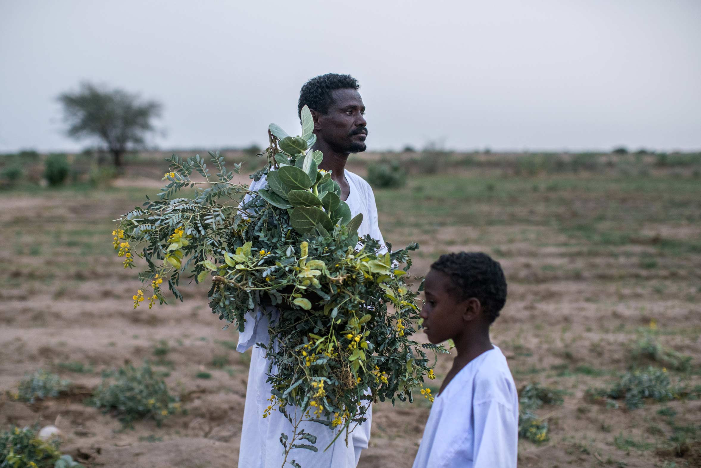 One of Africa's Most Fertile Lands Is Struggling to Feed Its