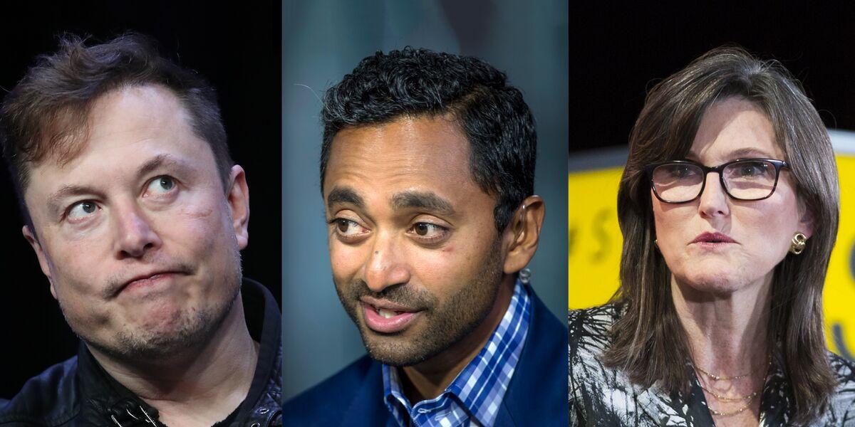 Elon Musk, Chamath Palihapitiya and Cathie Wood Face a Reddit Reckoning