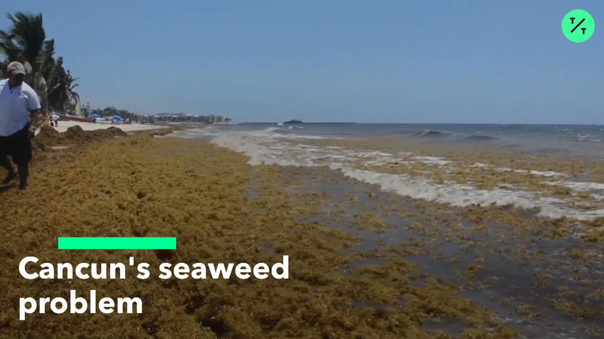 Cancun Seaweed 2019: Airport, Hotels, Beaches See Fewer