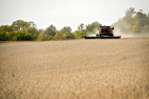 Fed Panel Warned of Farmland Bubble Amid Increasing Credit Risk