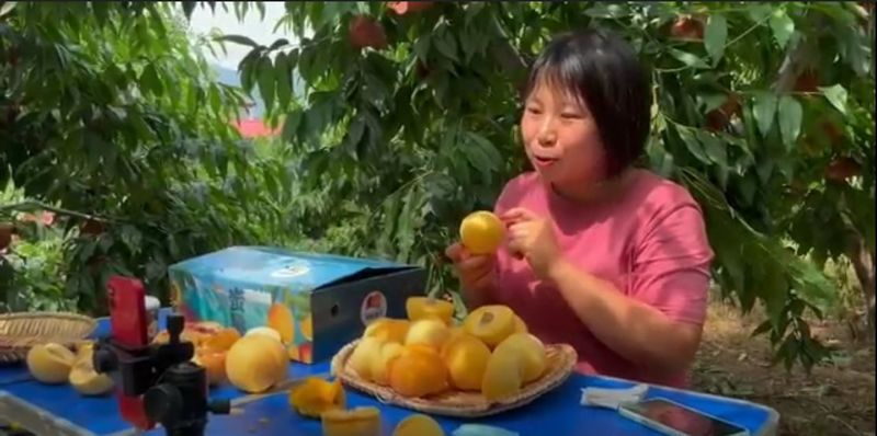 relates to Livestreaming Farmers Earn Millions From Fruit on China's TikTok